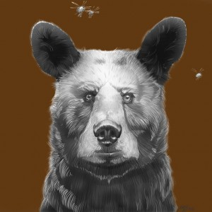 Joel Haynes Animals Squared - Bear